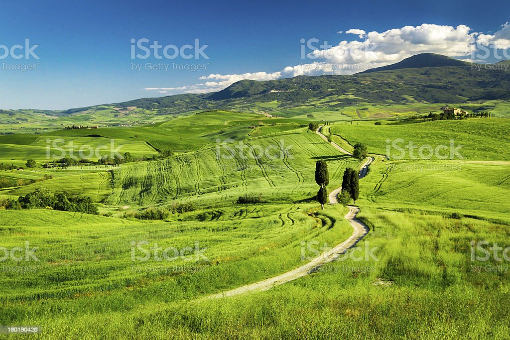 Beautiful view of the path between fields in Tuscany royalty-free stock photo