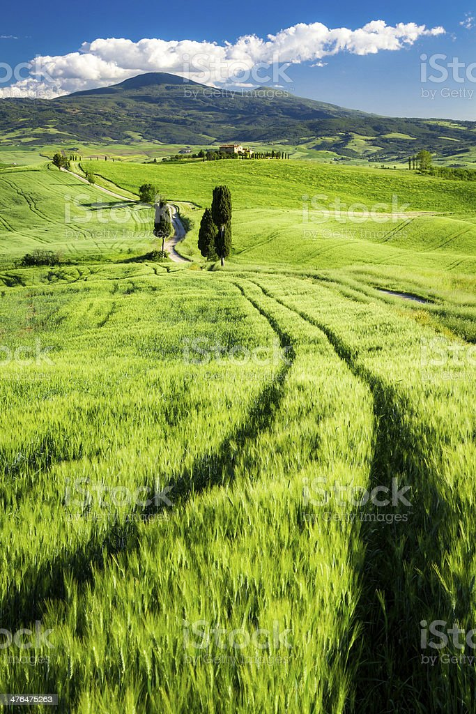 Beautiful view of the valley in Tuscany royalty-free stock photo