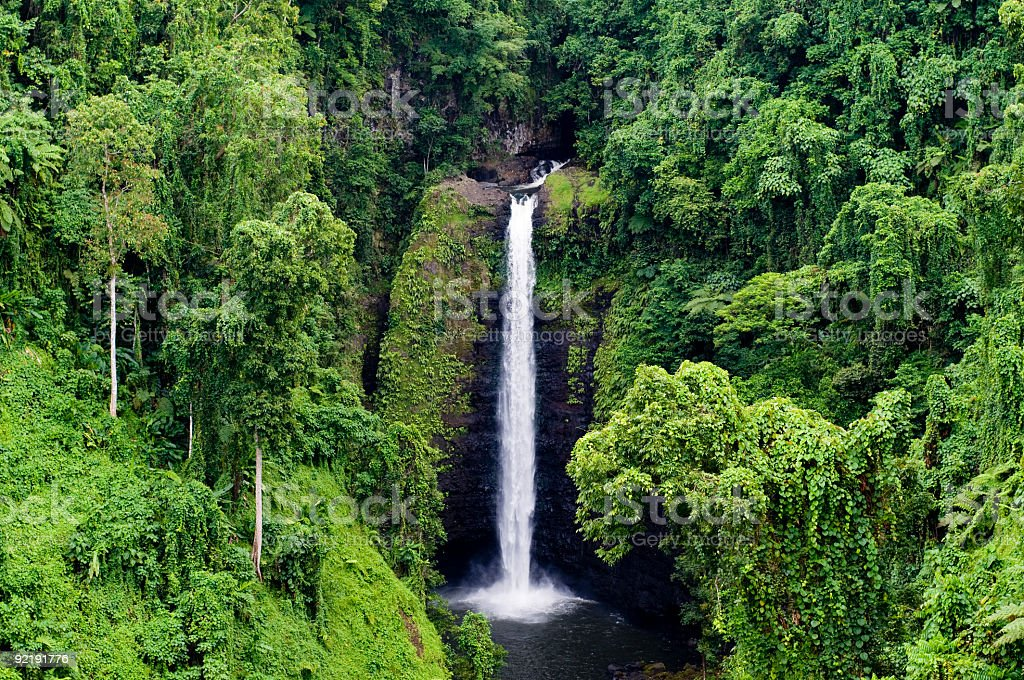 Beautiful view of thin waterfall in a dense forest stock photo