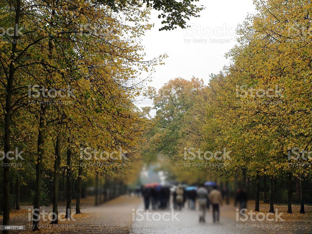 Beautiful View Of Trees In Autumn Season In Berlin Germany stock photo