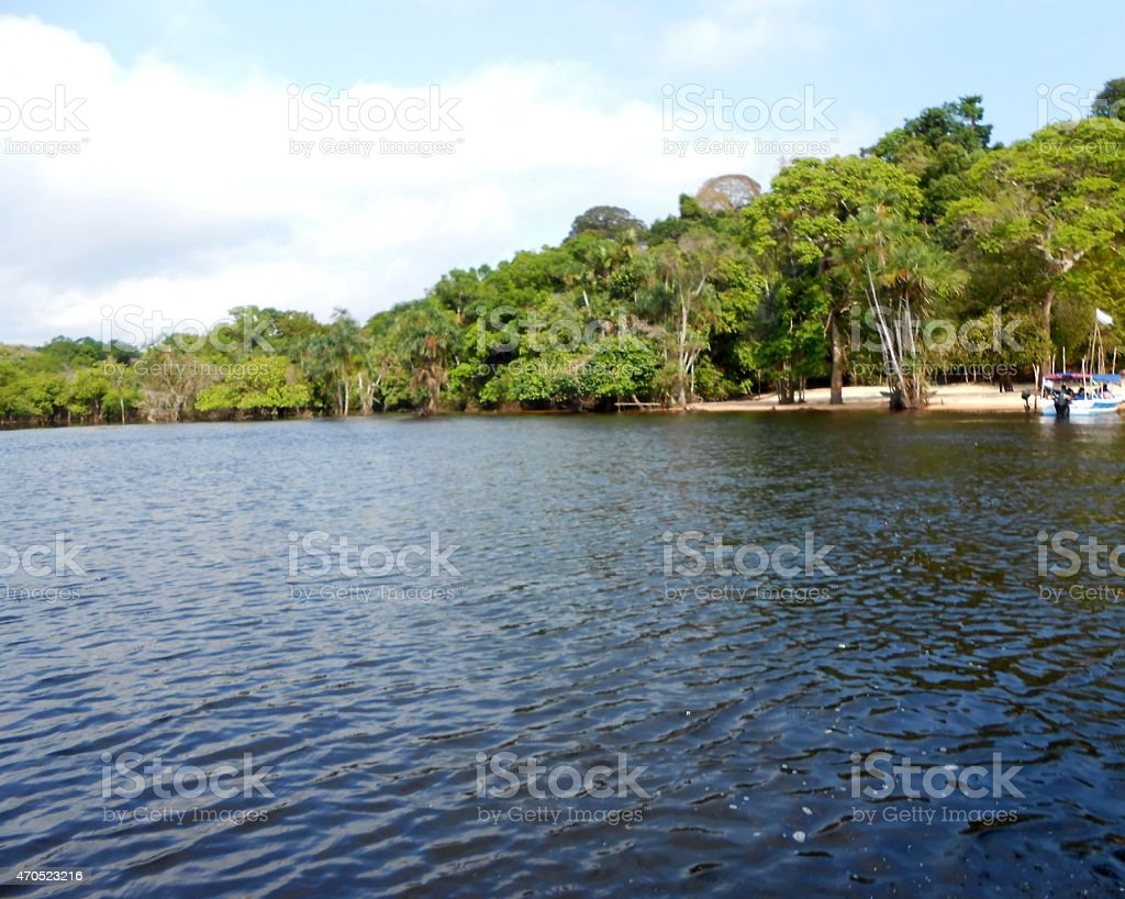 Beautiful view on the Rio Negro . stock photo