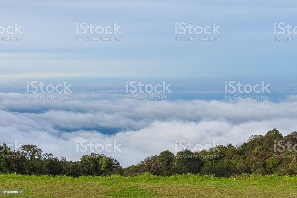Beautiful viewpoint of mist during rainy season, Chiangmai, Thailand stock photo