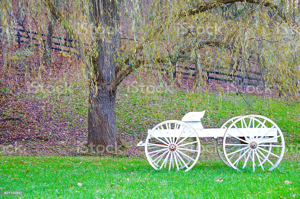Beautiful wagon in nature with weeping willow tree stock photo
