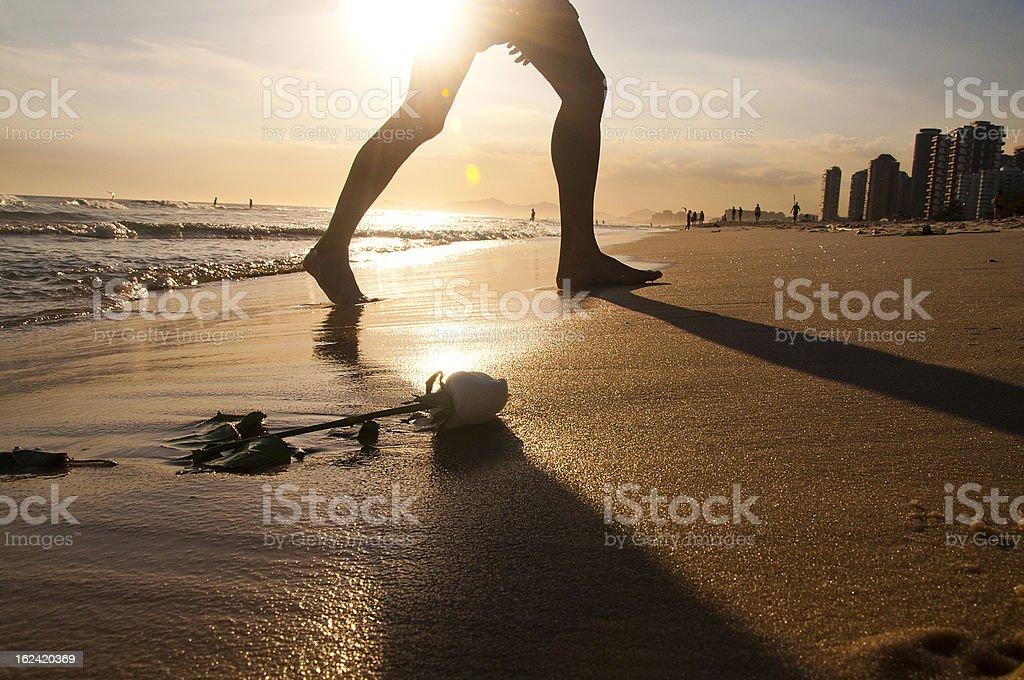 Beautiful walking stock photo