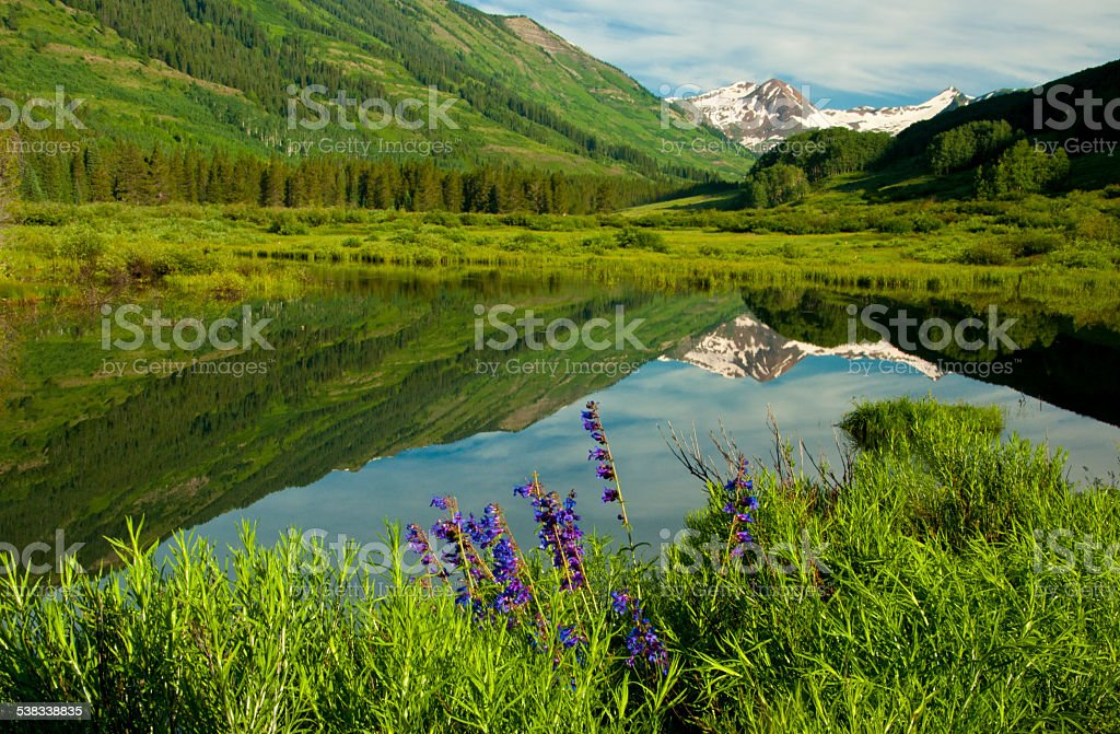 Beautiful water reflections in a clear blue lake. stock photo