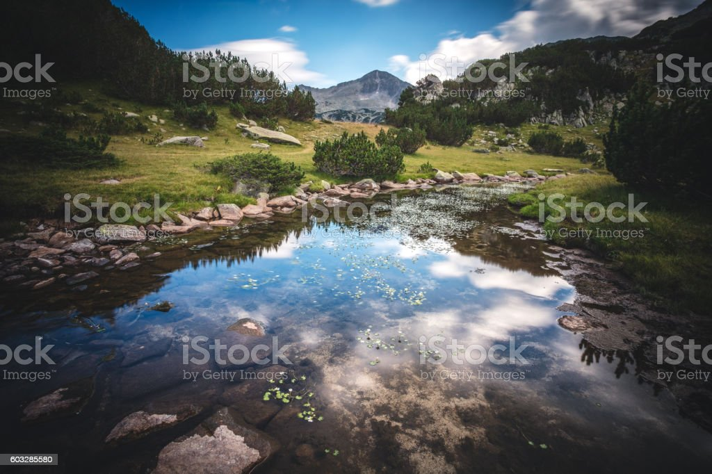 Beautiful water stream in mountain valley stock photo
