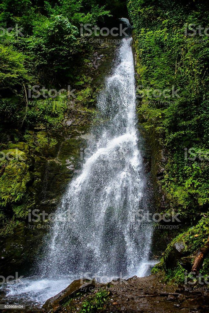 beautiful waterfall among the amazing forest stock photo