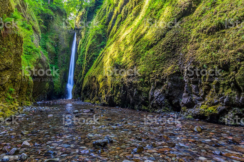 Beautiful waterfall and canyon in Oneonta Gorge trail, Oregon stock photo