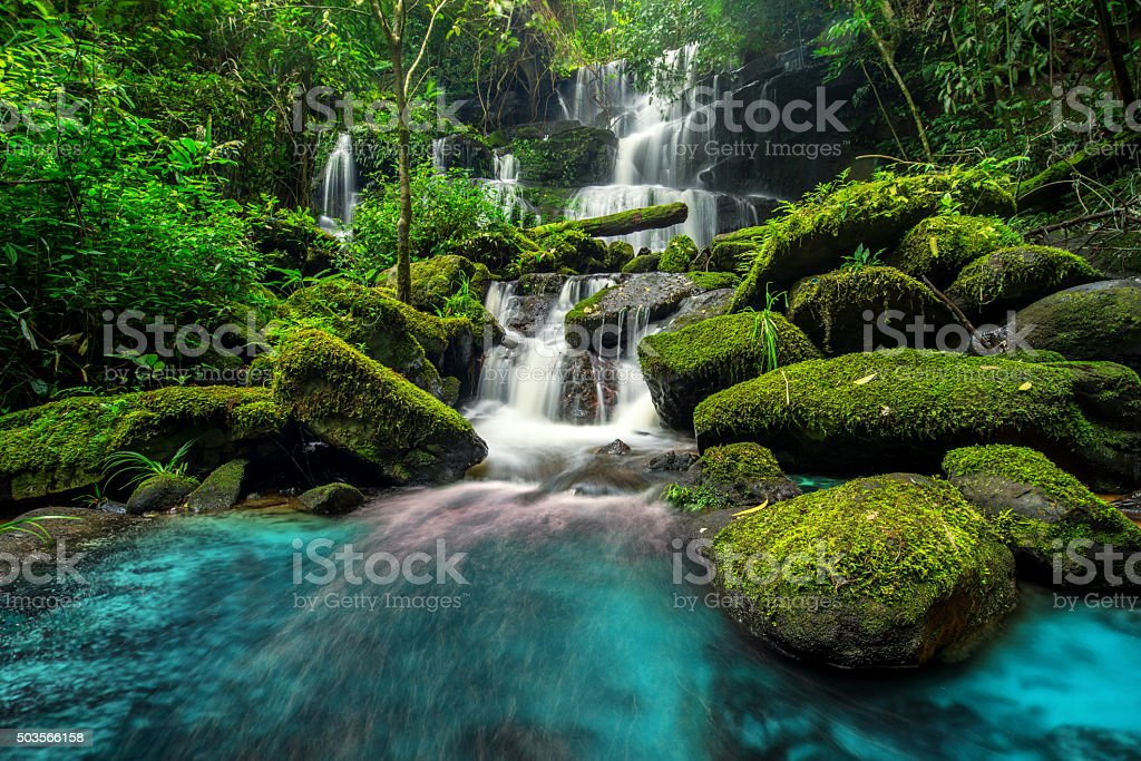 beautiful waterfall in green forest in jungle stock photo