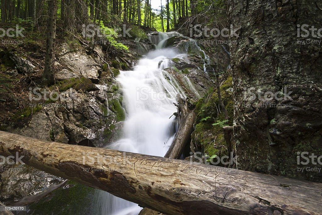Beautiful waterfall in summer royalty-free stock photo