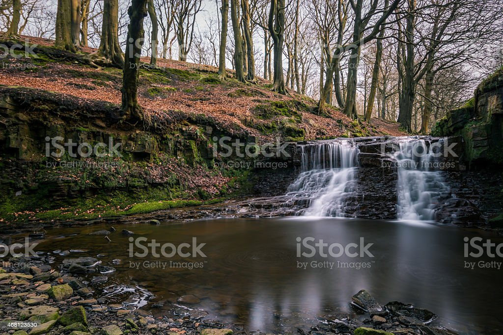 Beautiful Waterfall In The Roddlesworth Forest. stock photo