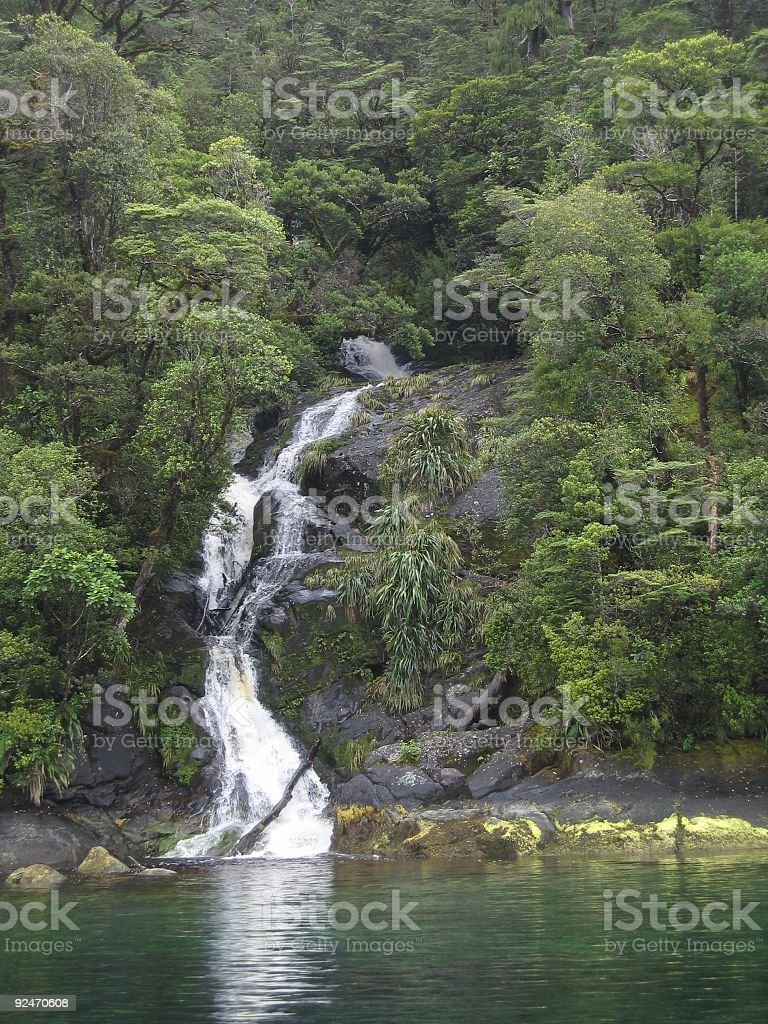 Beautiful Waterfall Through Native Forest royalty-free stock photo
