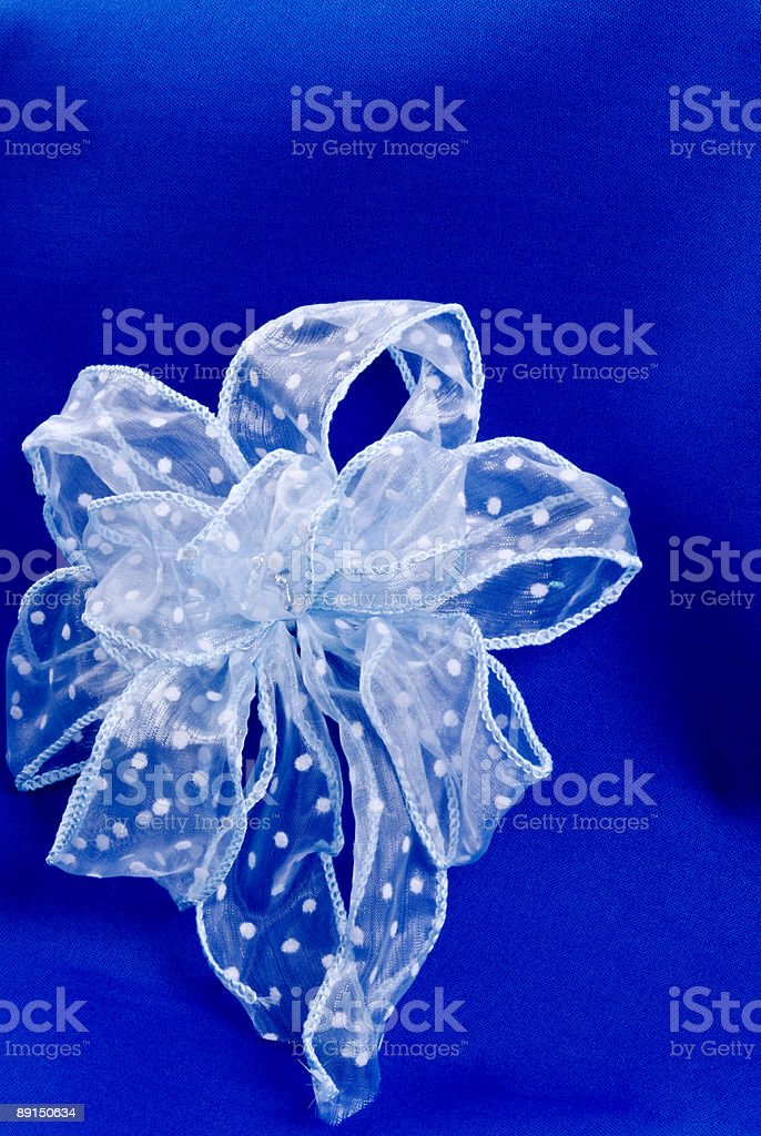 beautiful white bow with polka dots on a blue background royalty-free stock photo