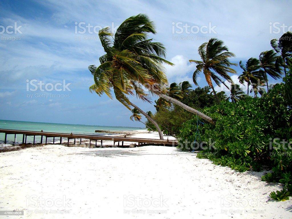 beautiful white sand beach stock photo