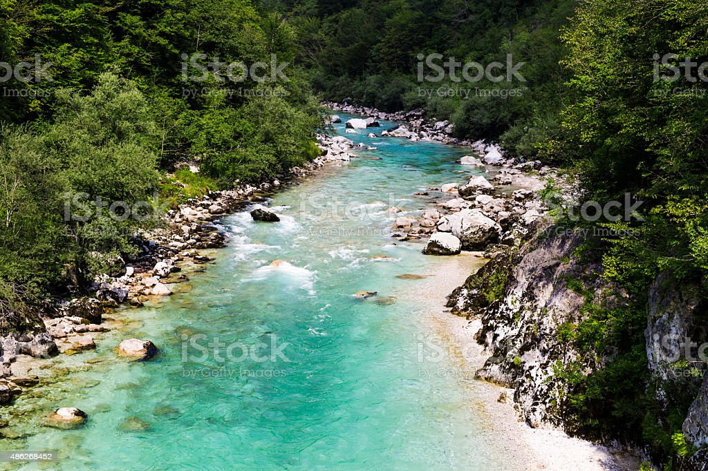 Beautiful wild river in the national park. stock photo