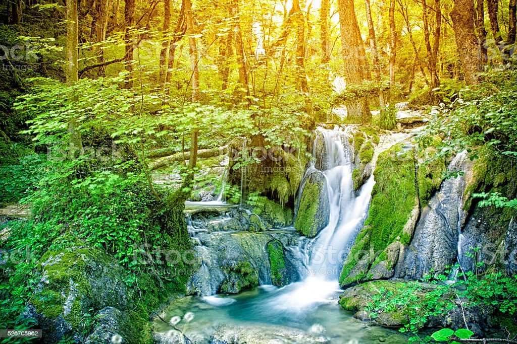 Beautiful wild waterfall in middle of sunny forest stock photo