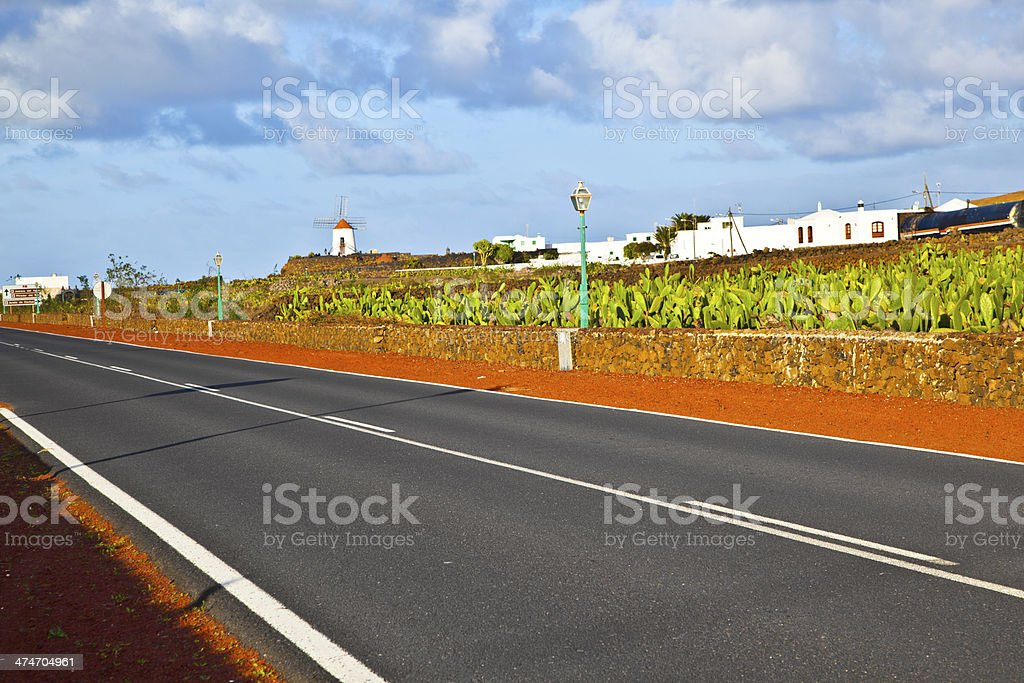 beautiful windmill with cactus garden in lanzarote stock photo