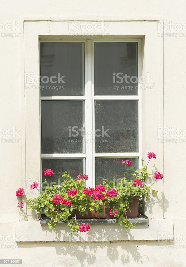 Beautiful window in Prague with flowers royalty-free stock photo
