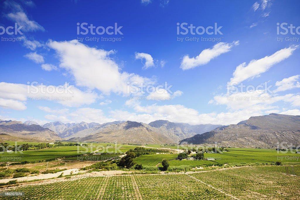 Beautiful Winelands Landscape Worcester Region Western Cape South Africa stock photo