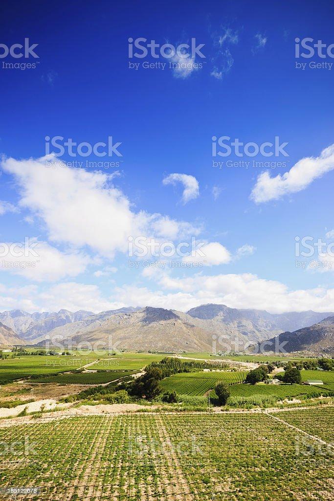 Beautiful Winelands Western Cape Province royalty-free stock photo