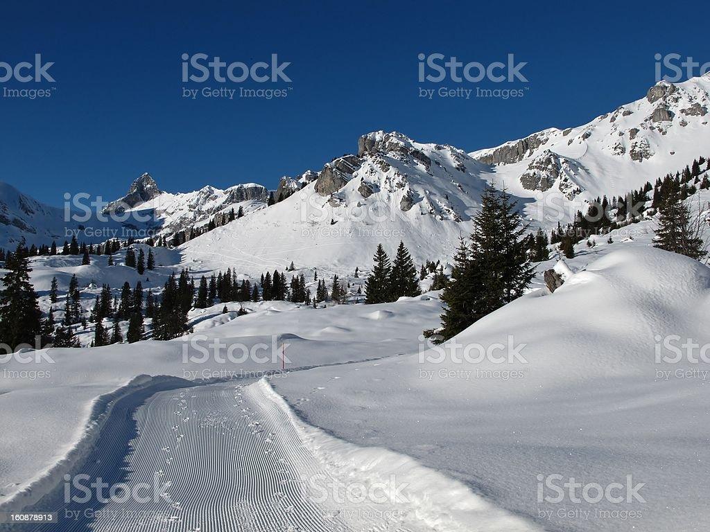 Beautiful winter day stock photo