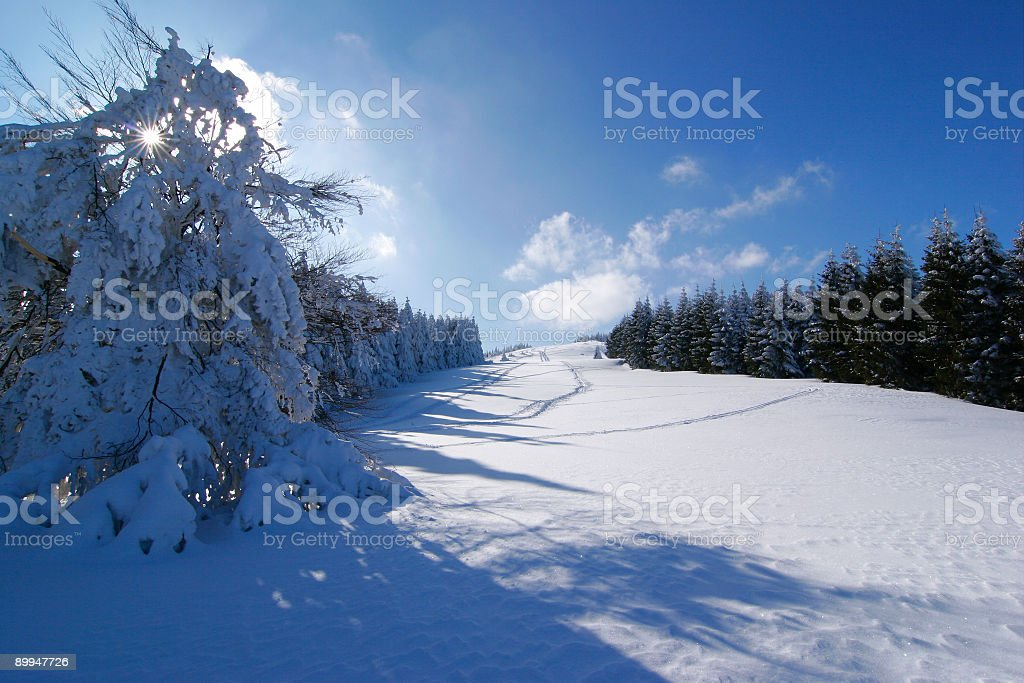 Beautiful Winter Day royalty-free stock photo