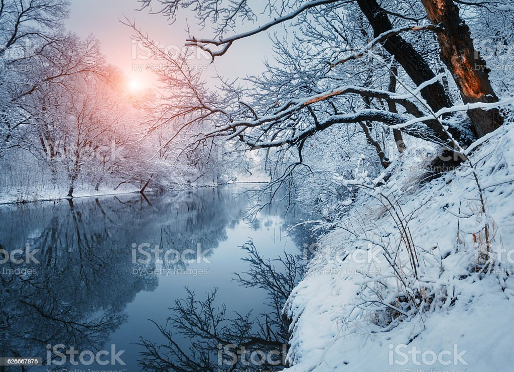 Beautiful winter in forest on the river at sunset stock photo
