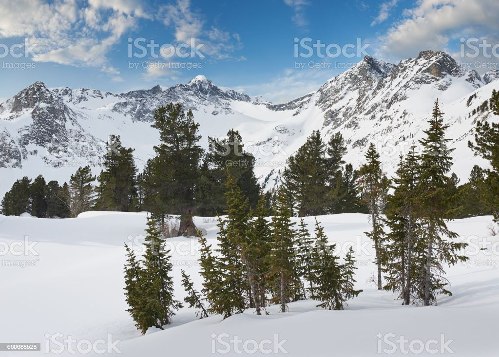 Beautiful winter landscape, Altai mountains,  Siberia, Russia. stock photo
