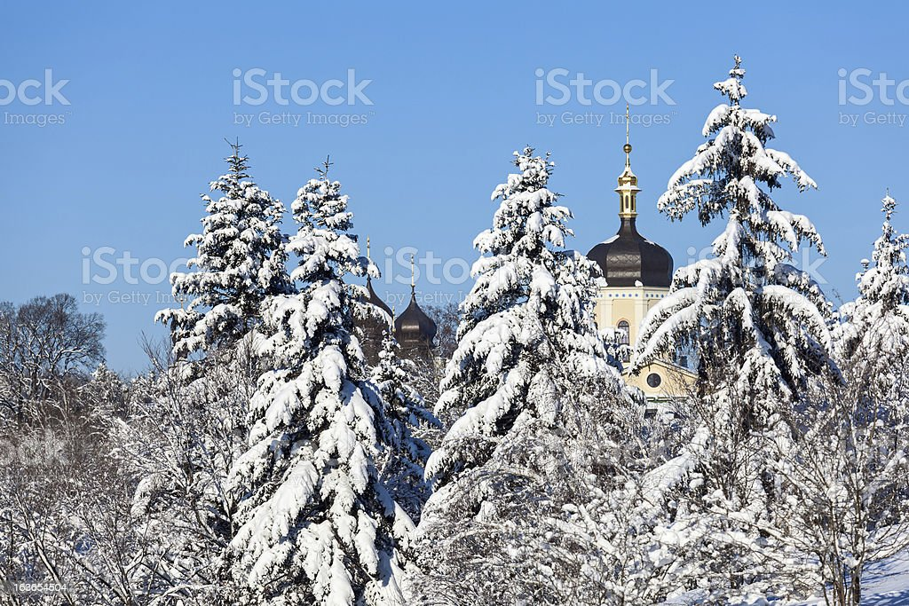 Beautiful winter landscape with snow covered firs royalty-free stock photo