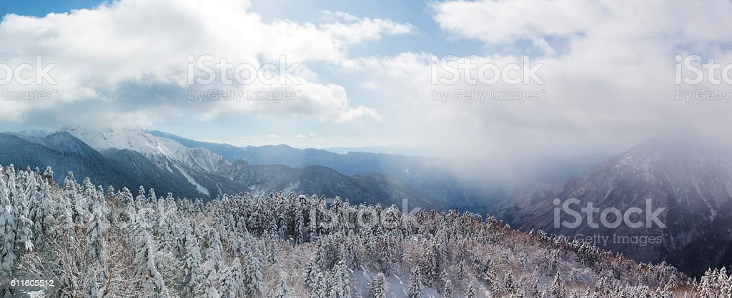 Beautiful winter landscape with snow covered trees, snowfall. stock photo