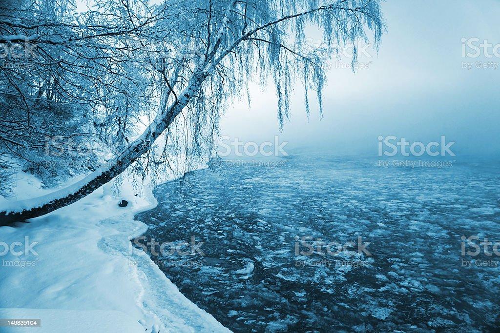 Beautiful winter royalty-free stock photo