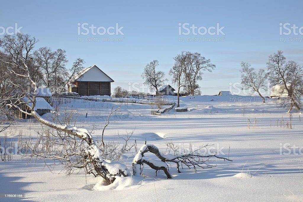Beautiful winter rural landscape. royalty-free stock photo