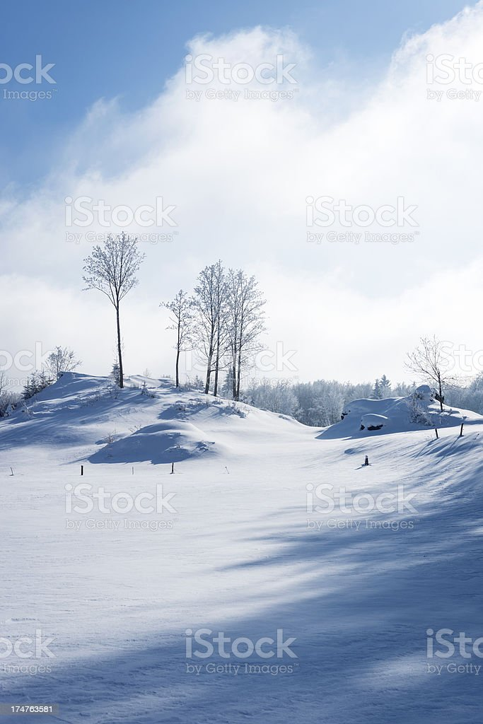 Beautiful Winter Scene in Slovenia Europe stock photo