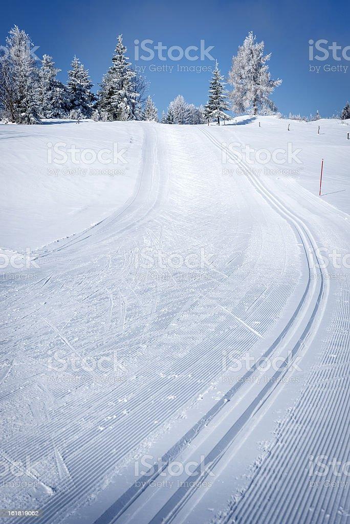 Beautiful Winter Scene with Cross-Country Ski Tracks stock photo