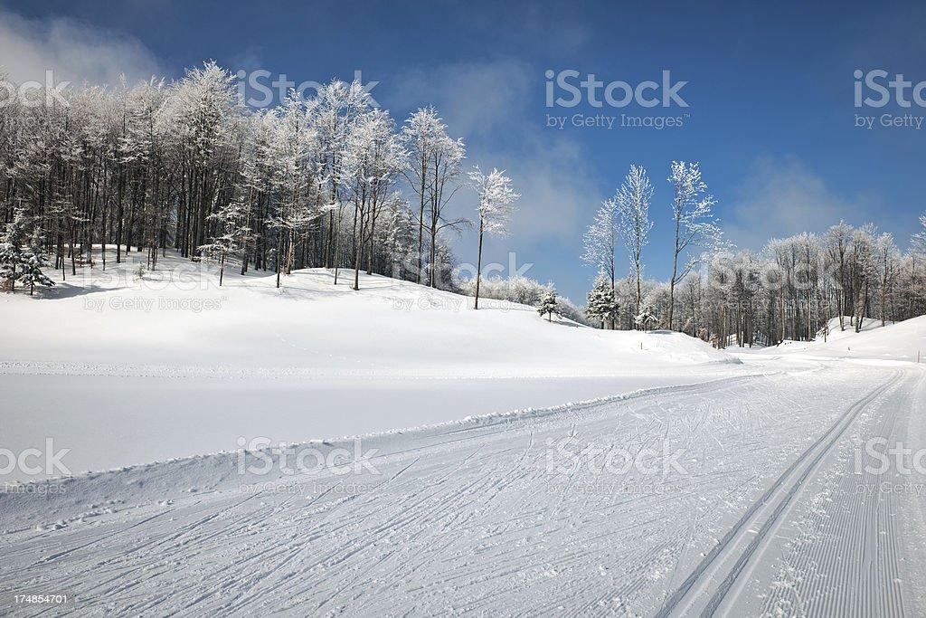 Beautiful Winter Scene with Cross-Country Ski Tracks royalty-free stock photo