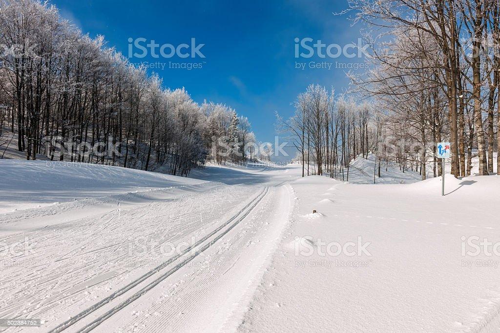 Beautiful Winter Scene with Cross-Country Ski Tracks,Slovenia stock photo