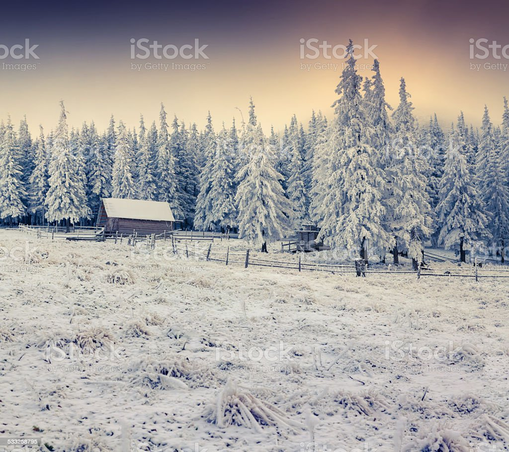 Beautiful winter sunrise in the foggy mountains. stock photo