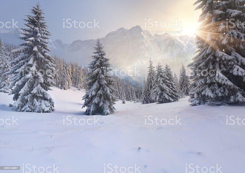 Beautiful winter sunrise in the mountains; sun stock photo