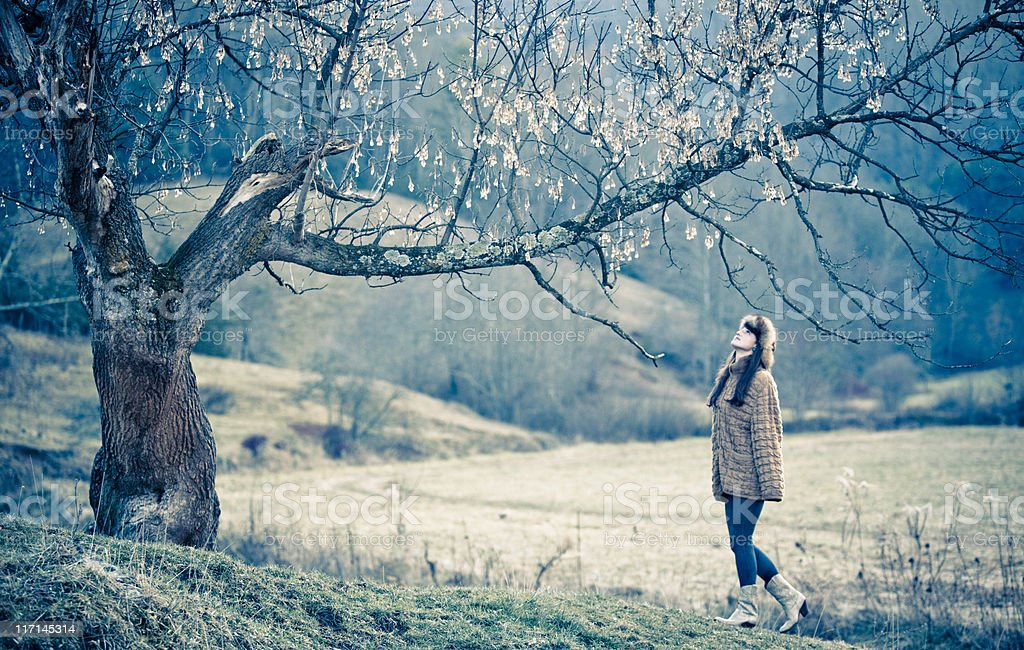 Beautiful woman admiring an old maple tree royalty-free stock photo