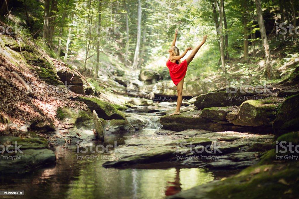Beautiful woman ballerina dance in old wood stock photo