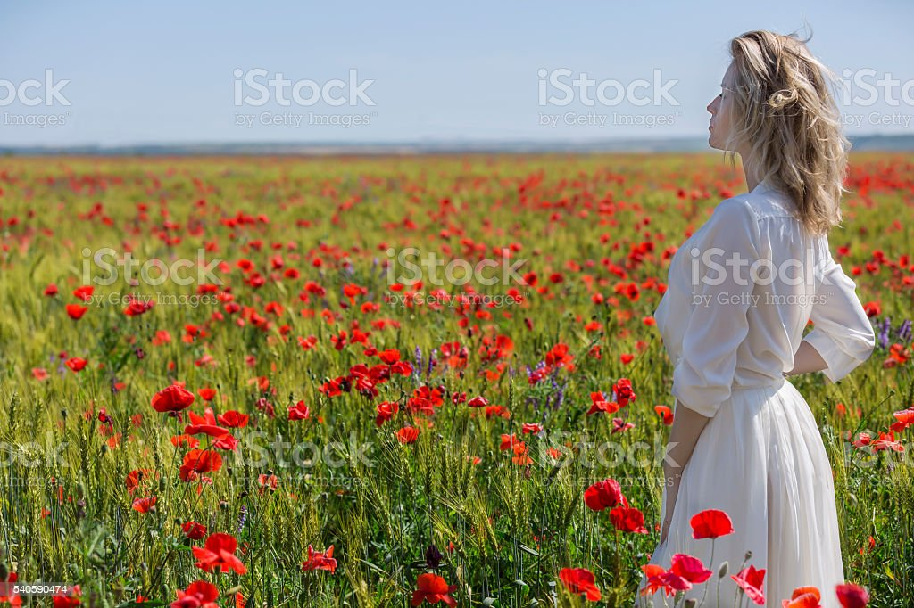 Beautiful woman contemplating thebeauty of summer field stock photo