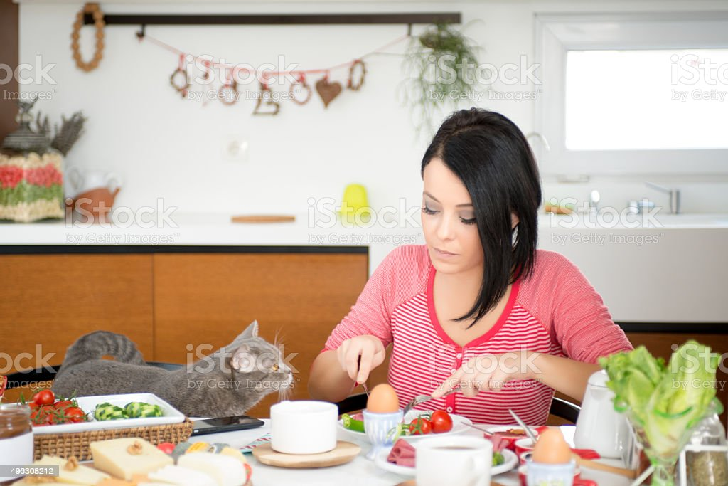 beautiful woman eating breakfast with cats stock photo