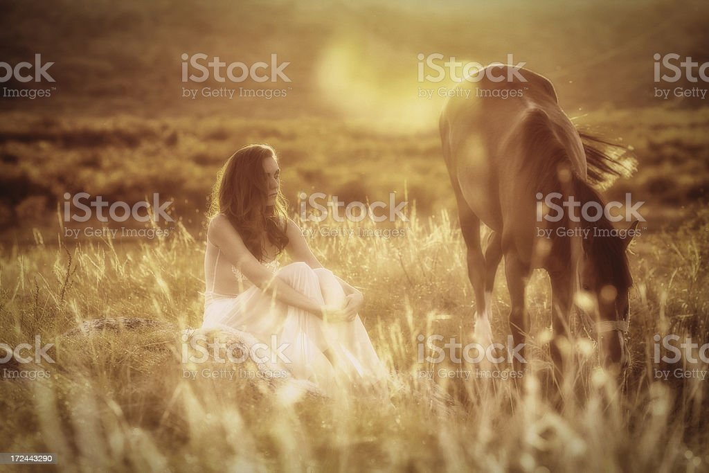 Beautiful woman embracing an horse against sunlight royalty-free stock photo