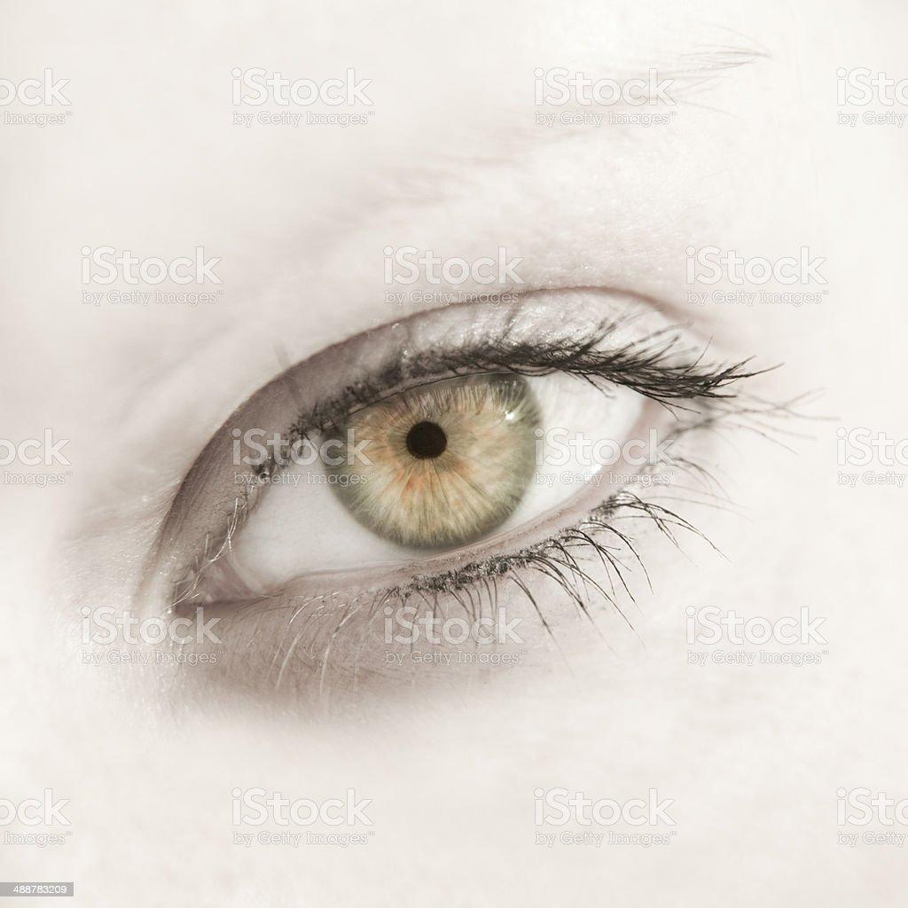 Beautiful woman eye close up stock photo