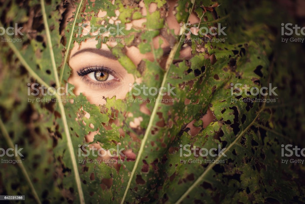 Beautiful woman eye through the leaf in nature stock photo