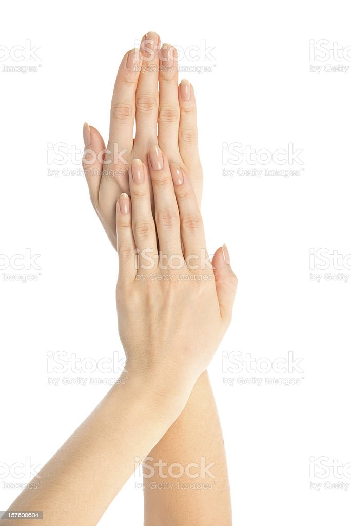 Beautiful woman hands with french manicure royalty-free stock photo