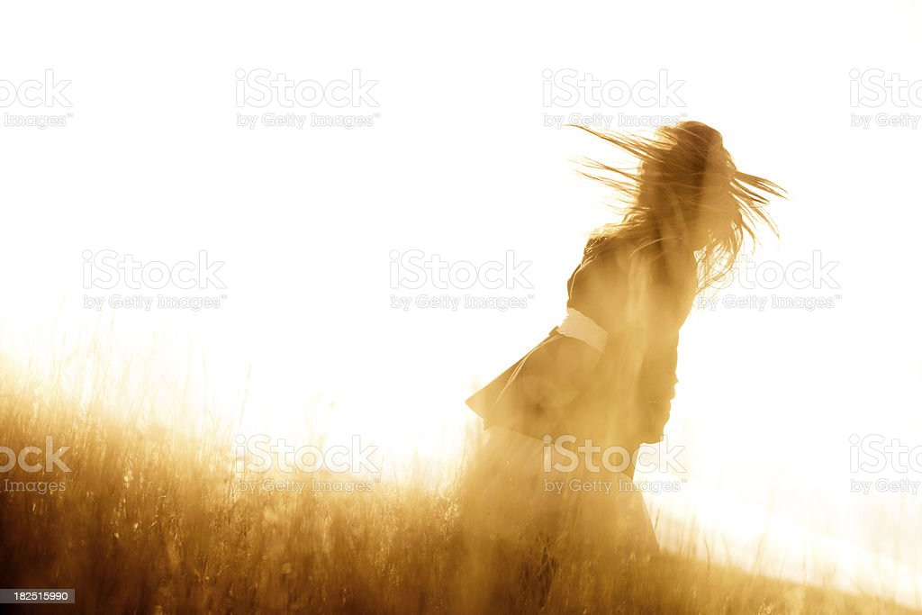 Beautiful woman in a sunlit field royalty-free stock photo