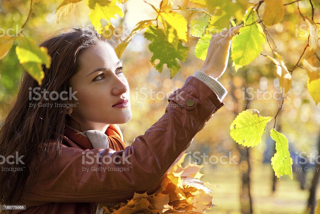 Beautiful woman in autumn park royalty-free stock photo