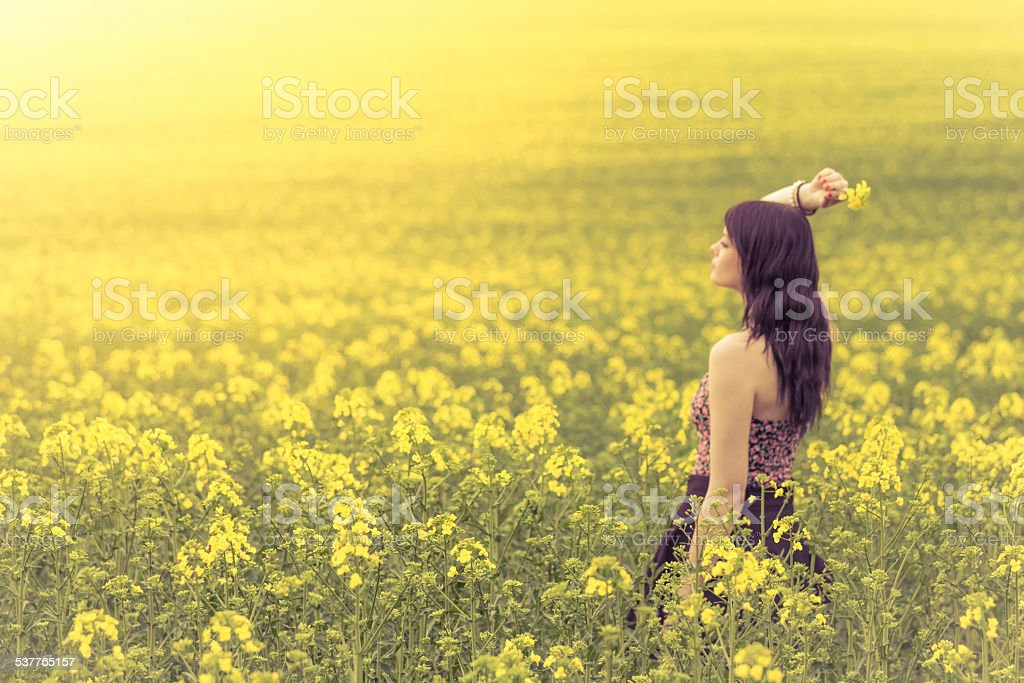 Beautiful woman in meadow of yellow flowers from side behind stock photo