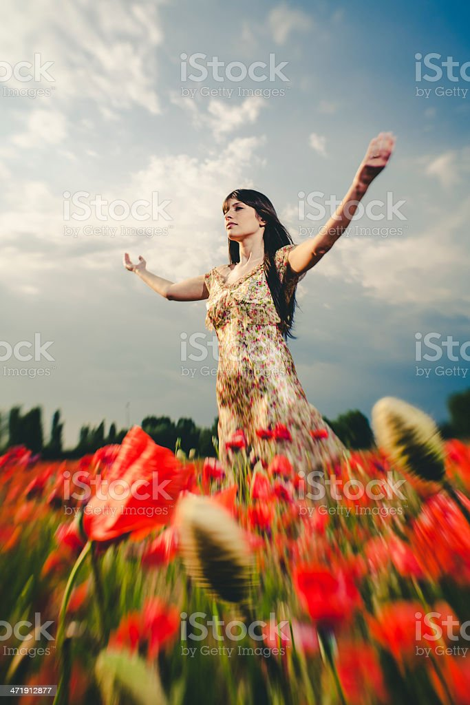 Beautiful woman in poppy field royalty-free stock photo